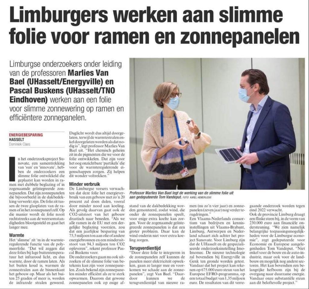 Artikel Het belang van Limburg